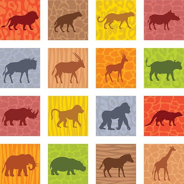 アフリカの動物アイコンセット - 動物園点のイラスト素材/クリップアート素材/マンガ素材/アイコン素材