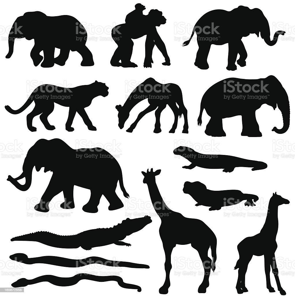 アフリカの動物シルエットセット - アジアゾウのベクターアート素材や
