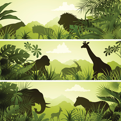 African Banners