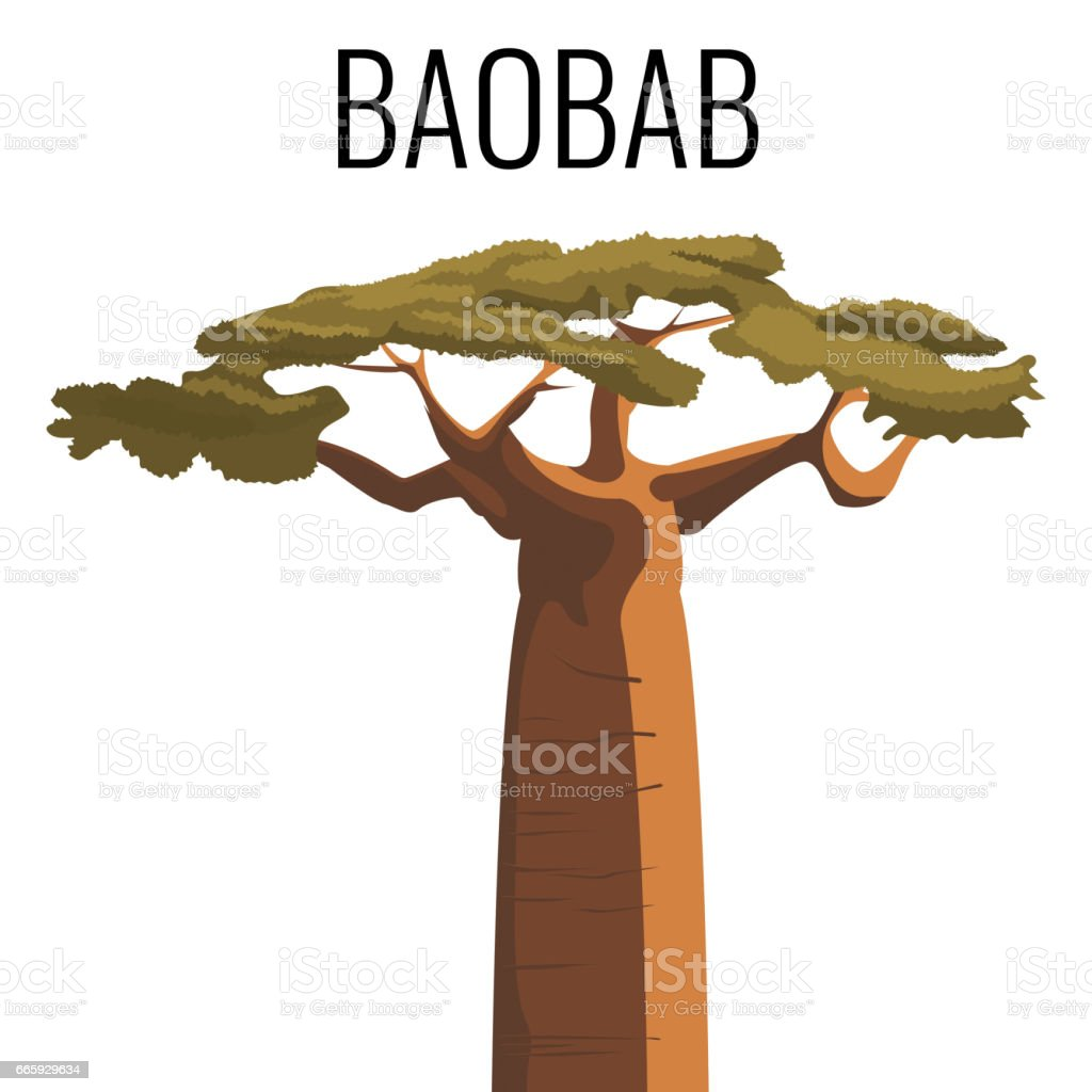 African baobab tree icon emblem with text isolated on white vector art illustration