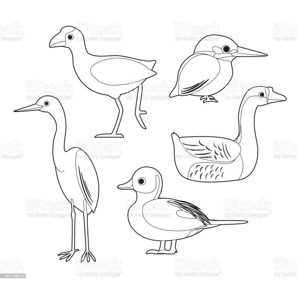 Ilustración De Pájaro Africano Para Colorear Libro Juegos Garza Pato