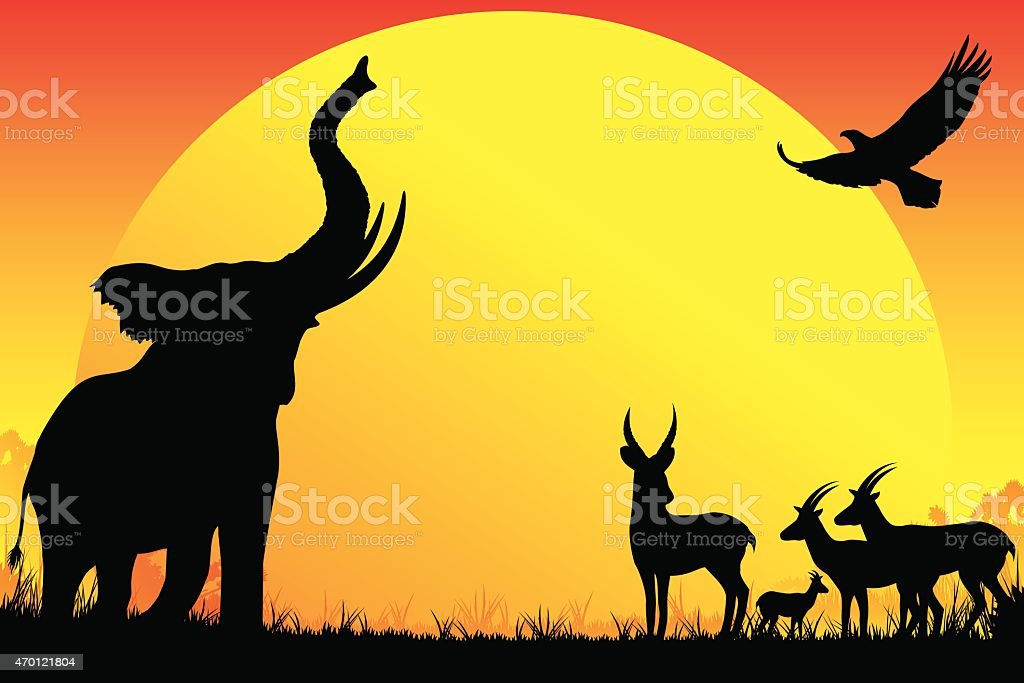 African Elephant, antelopes, eagle silhouettes safari in hot day