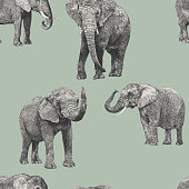 African Elephant Repeat Pattern