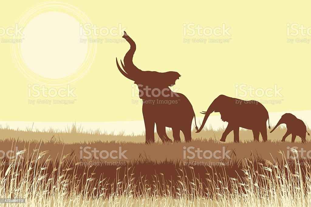 African Elephants in savanna vector art illustration