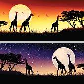 African Giraffes silhouettes safari illustrations set. Two horizontal banners.