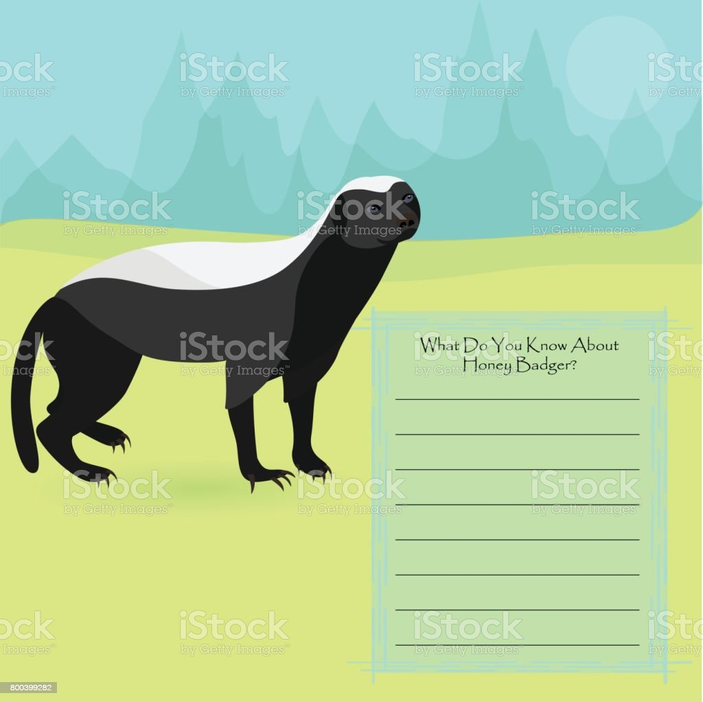 African Honey Badger vector art illustration