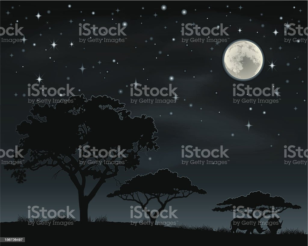 African landscape at night vector art illustration