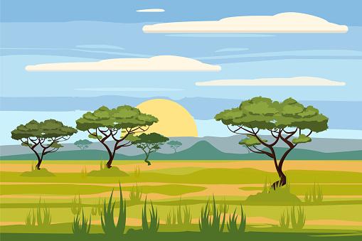Paisaje africano, sabana, sunset, vector, Ilustración, estilo de dibujos animados, aislado