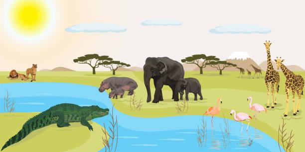 stockillustraties, clipart, cartoons en iconen met afrikaans landschap vector illustratie - wildplassen