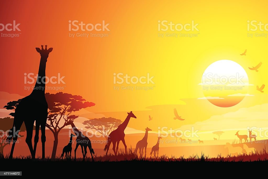 African landscape with Giraffes silhouettes in hot day vector art illustration