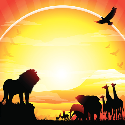 African Lion, Elephants, Giraffes and Antelopes silhouettes safari against Kilimanjaro