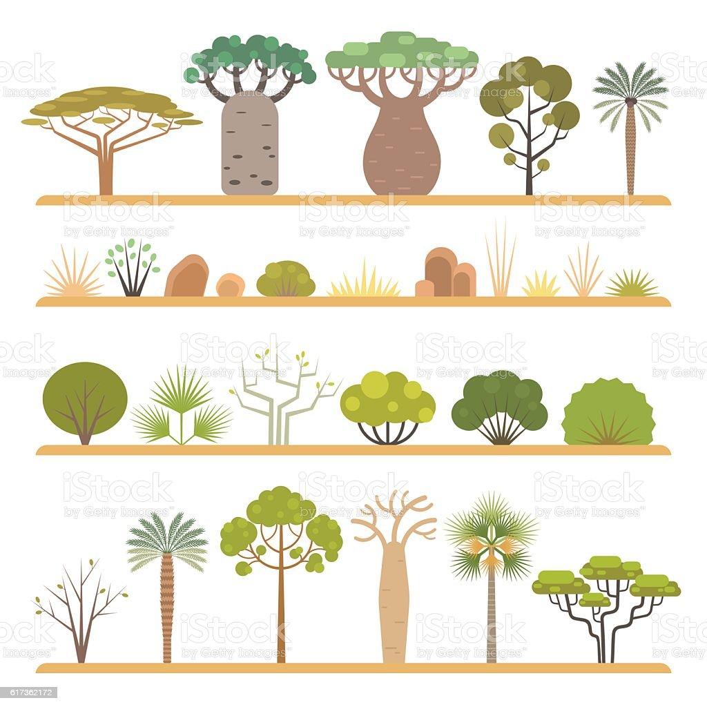 African plants vector art illustration