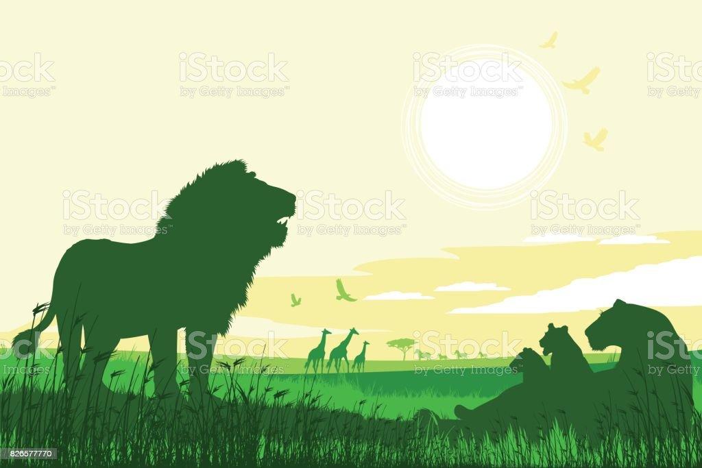 African Safari Hintergrund mit brüllenden Löwen, Löwin, Cubs und Giraffen – Vektorgrafik