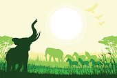 African Safari background with trumpeting elephant and other African animals.