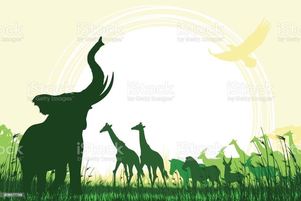 African Safari background with trumpeting elephant, giraffes, zebras and antelopes - illustrazione arte vettoriale
