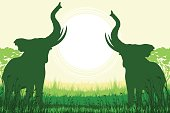 African Safari background with two trumpeting elephants