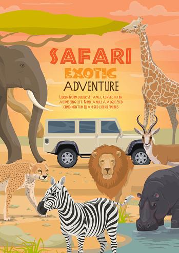 African safari hunting sport and wild animals