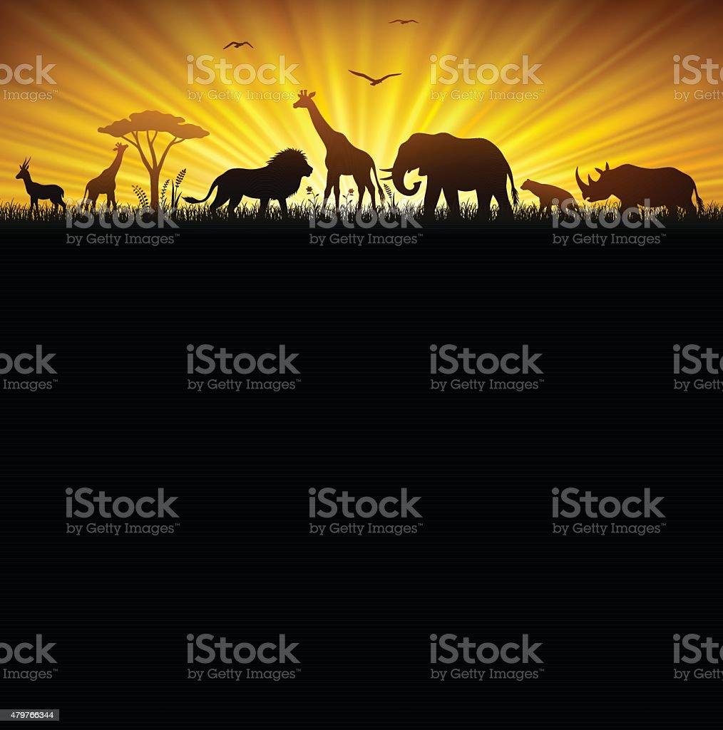 African Safari – Vektorgrafik