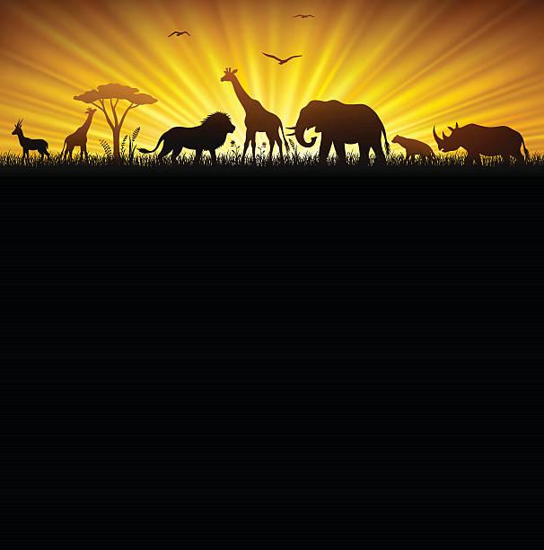 アフリカンサファリ - 野生動物旅行点のイラスト素材/クリップアート素材/マンガ素材/アイコン素材