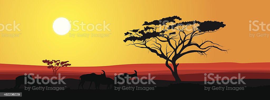 African savannah at sunset vector background vector art illustration