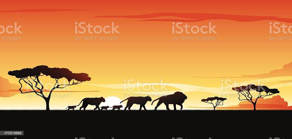 African savannah vector art illustration