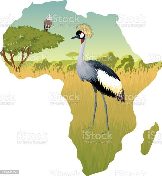 African savannah with crowned crane and eagle vulture - vector illustration