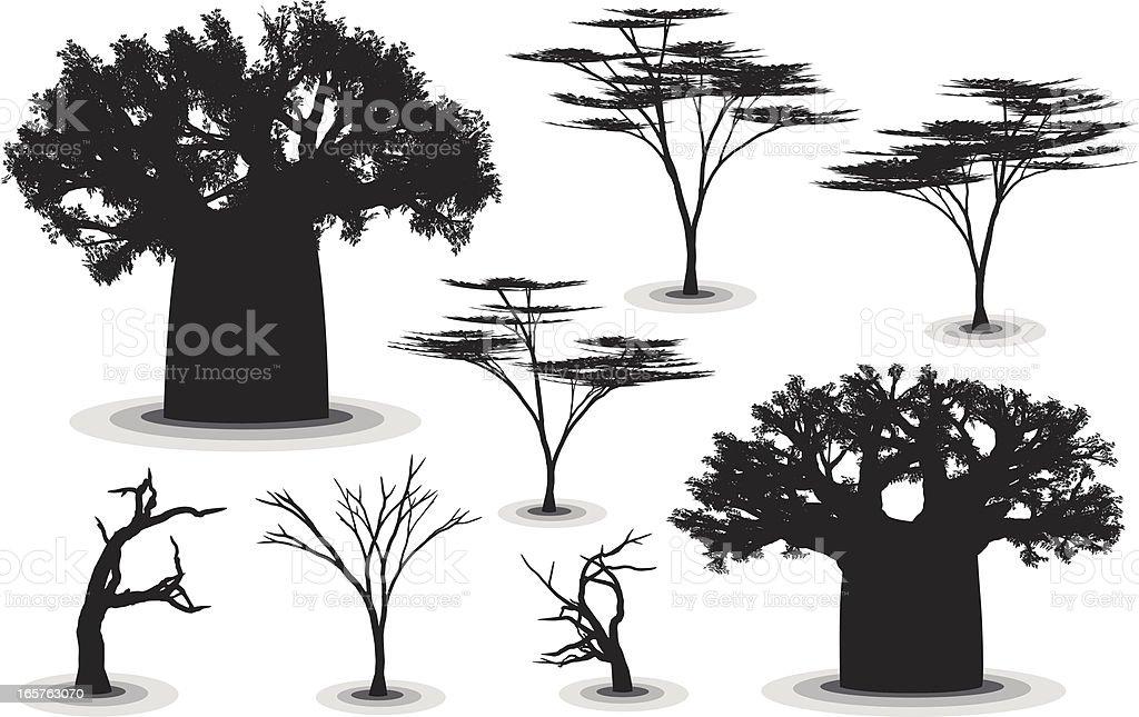 African Trees vector art illustration