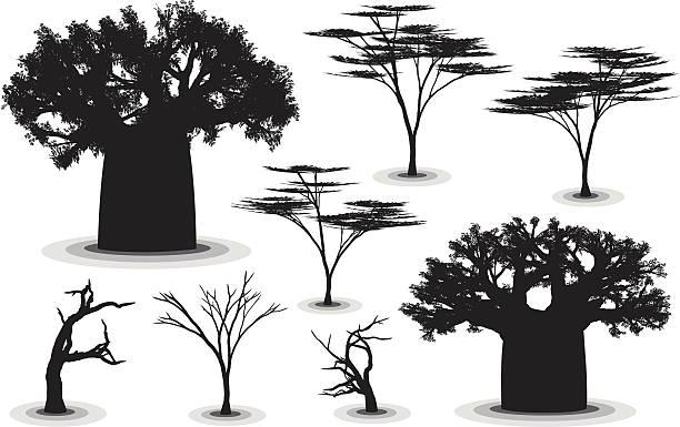 Árboles de africano - ilustración de arte vectorial