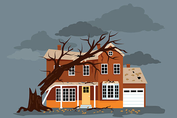 After a storm House damaged by a fallen tree, EPS 8 vector illustration, no transparencies damaged stock illustrations