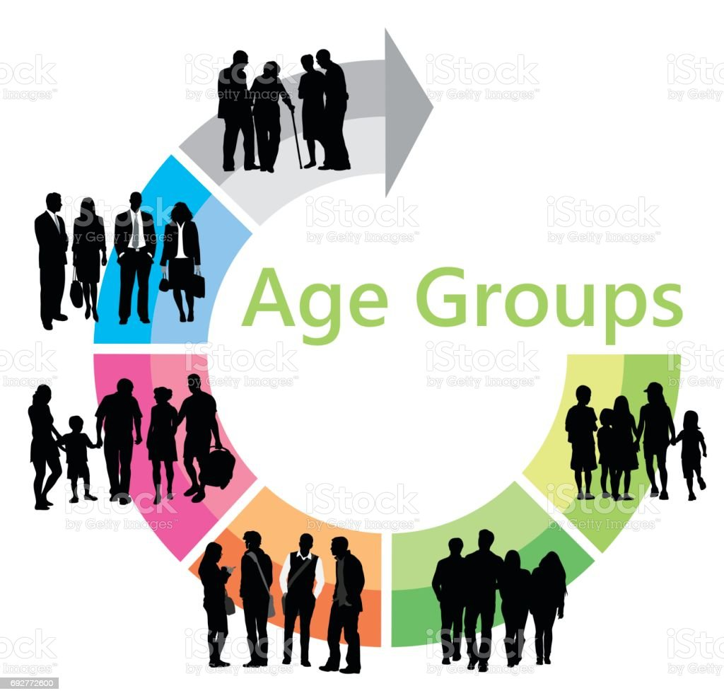 Age Group Chart vector art illustration