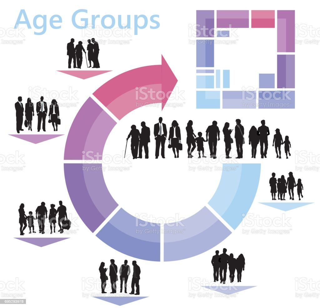 Age Groups Infographics vector art illustration