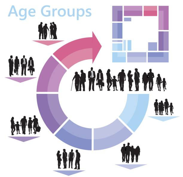 age groups infographics - demographics infographics stock illustrations, clip art, cartoons, & icons