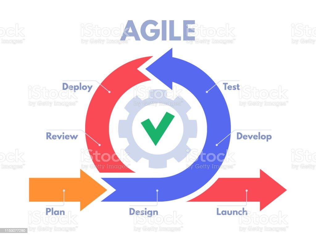 Agile Management agile development process infographic software developers
