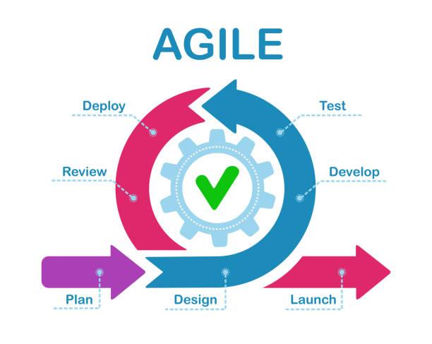 stockillustraties, clipart, cartoons en iconen met agile ontwikkelingsproces infographic. software ontwikkelaars sprints, product management en scrum sprint scheme vector illustratie - organisatie