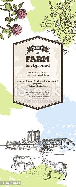 Vertical banner. Cows graze near the farm. Rustic landscape style sketch. Retro illustration.