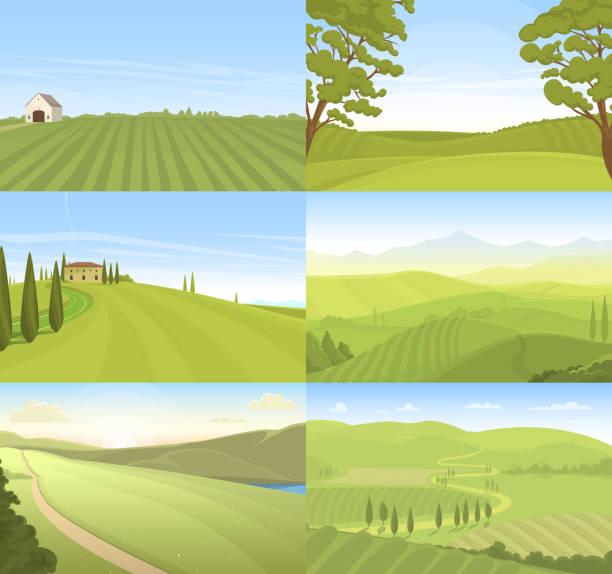 agricultural farm field set vector - corn field stock illustrations, clip art, cartoons, & icons