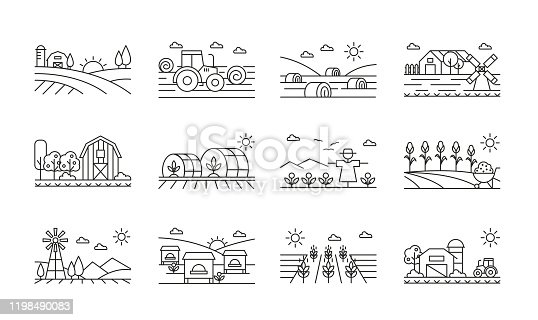 Agricultural icons black and white linear set. Harvesting combine and machinery pack. Fields with corn and wheat. Cultivating and farming illustrations isolated on white background
