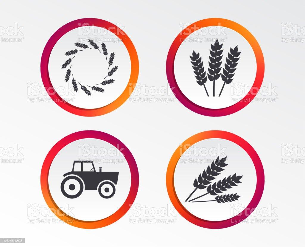 農業のアイコンです。小麦トウモロコシやグルテンフリー。 - アレルギーのロイヤリティフリーベクトルアート