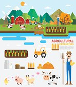 Agricultural production infographic.vector