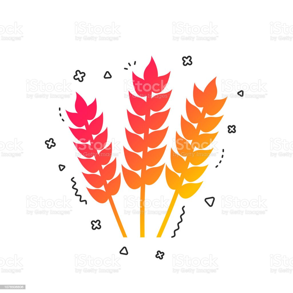 Agricultural Sign Icon Gluten Free Or No Gluten Vector Stock