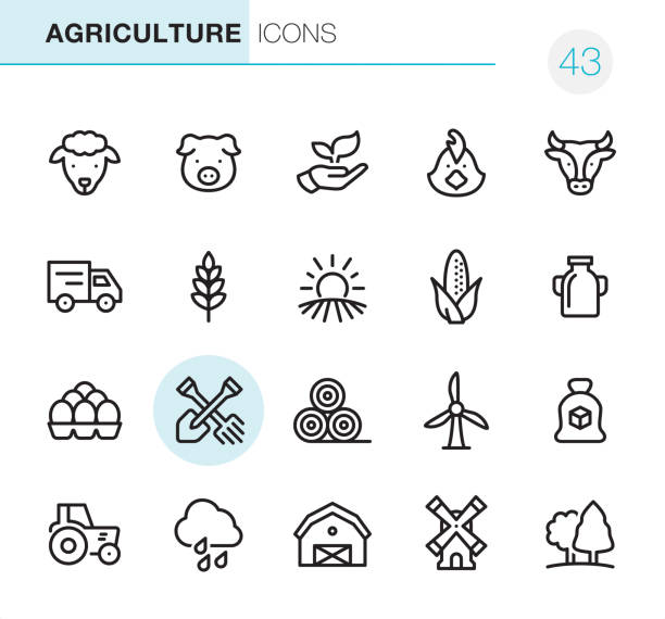 stockillustraties, clipart, cartoons en iconen met landbouw en boerderij - pixel perfect pictogrammen - pig farm