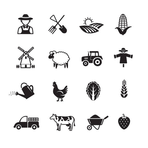 Agriculture and farming icons Agriculture and farming icons, Set of 16 editable filled, Simple clearly defined shapes in one color. farmer stock illustrations