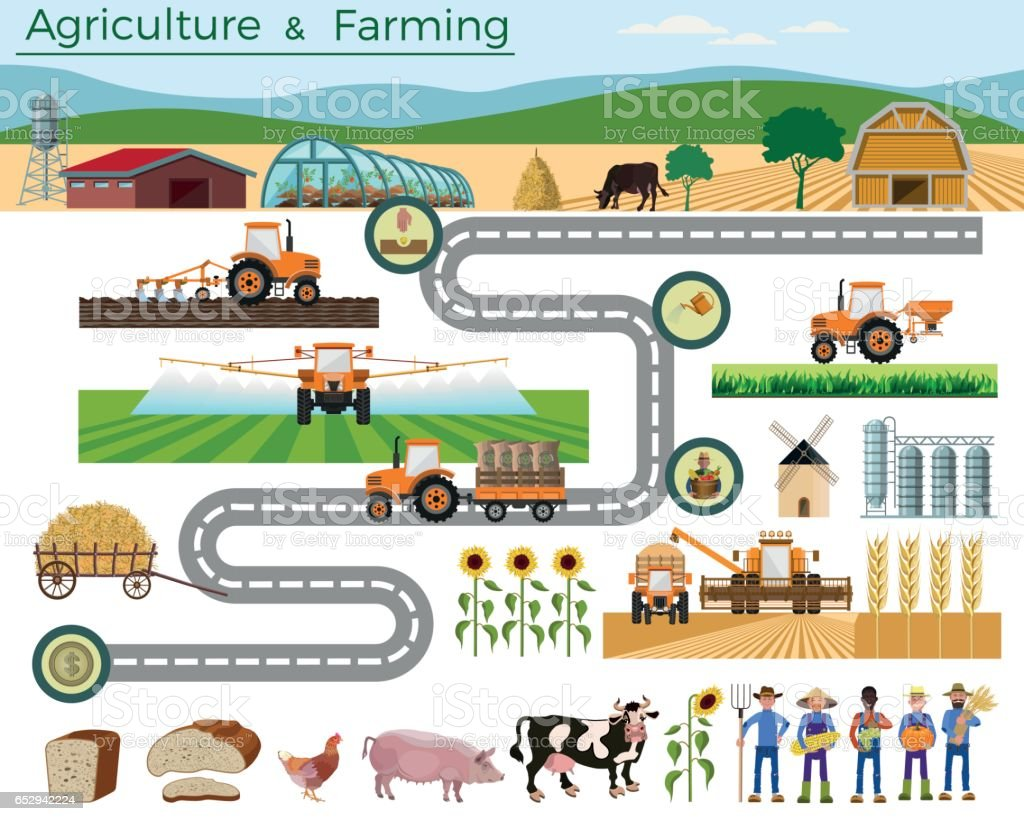 Agriculture et élevage. - Illustration vectorielle