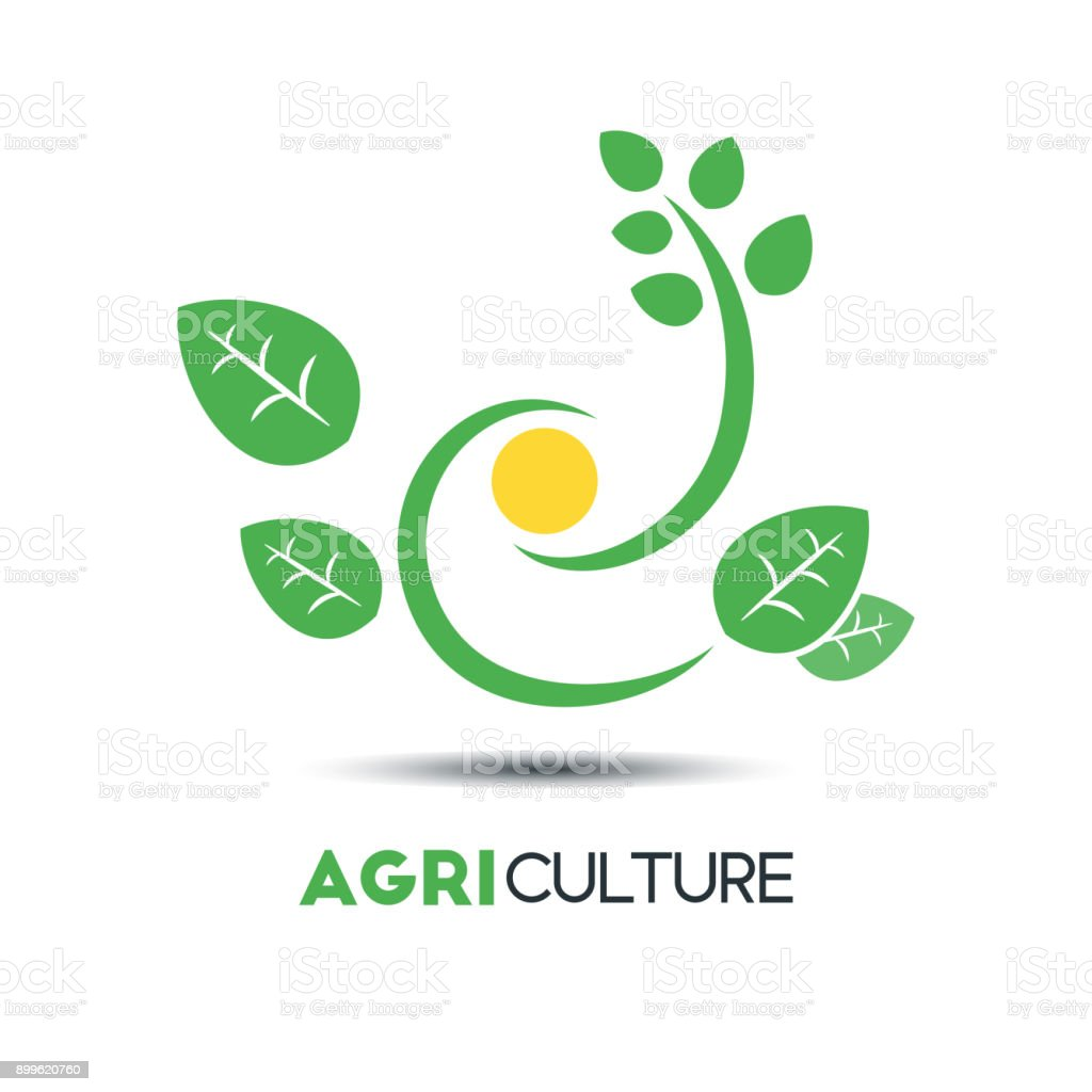 Agriculture Business Vector Template. Green Leaf With The Sun Vector  Illustration. Eco Friendly  Editable Leaf Template