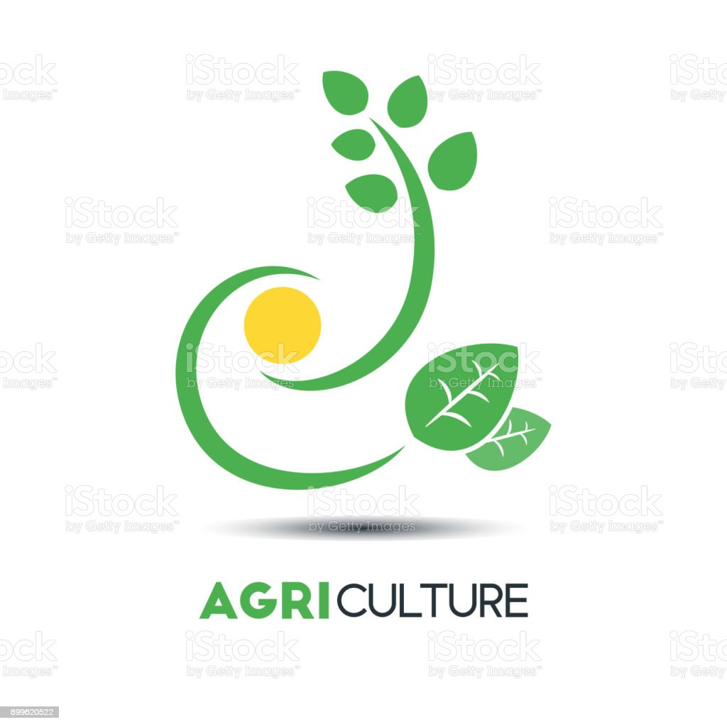 Agriculture Business Vector Template Green Leaf With Two Unique ...
