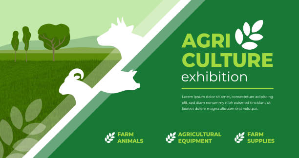 Agriculture exhibition design template Design concept for agriculture exhibition, fair. Identity for farm animals show, livestock, agro conference. Vector illustration with sign of cow, pig, ram. Template for flyer, poster, banner, ticket agricultural cooperative stock illustrations