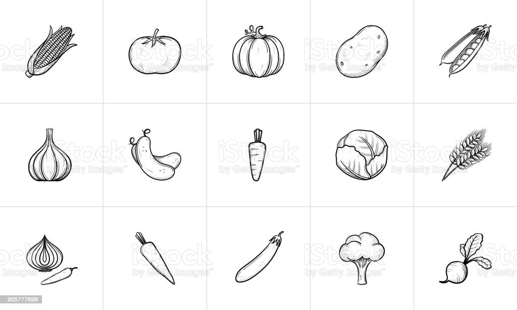 Agriculture food sketch icon set vector art illustration