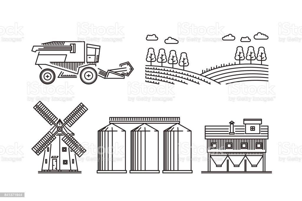 Agricultura para el cultivo de trigo centeno cereales - ilustración de arte vectorial
