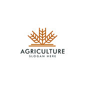 Agriculture icon vector template, Wheat farm symbol design logotype