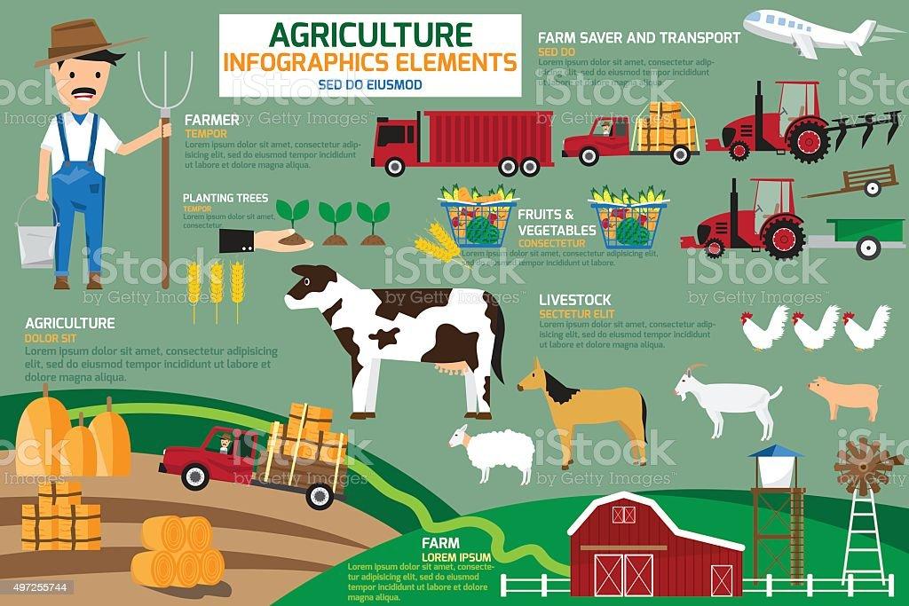 Agriculture infographics elements. vector illustration. vector art illustration
